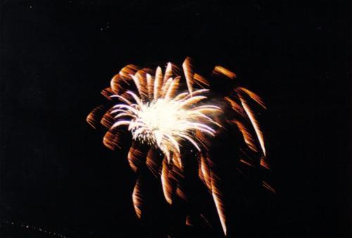 00080 (1)